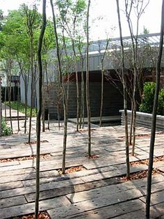 Project: PJ8 Showhouse | SEKSAN DESIGN - Landscape Architecture and Planning / repinned on toby designs