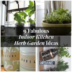Have you been wanting to grow an Indoor Kitchen Herb Garden?  Here are 9 fabulous ideas to help inspire you!