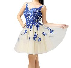 Belle House Sheer Neck Semi Homecoming Dress Prom Gown BHJ34 Belle House http://www.amazon.com/dp/B016NSHYP6/ref=cm_sw_r_pi_dp_z9UAwb1NP5T9J