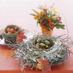 herbst deko eicheln nest basteln