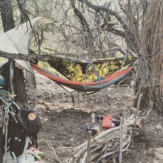 Our second camp along the pct. #hammocklife #hammock #bushcraft #bushcamp #outdoorlife #outdoors #wildcamp #wilderness #naturelover #bearcountry #enohammocks by @native_wolf_bushcraft