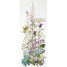 """Thea Gouverneur TG821 White 43.25"""" x 17.75"""" Wild Flowers On Aida Counted Cross Stitch Kit"""
