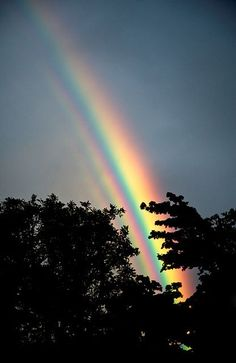 "rebellefleurnevergrowup: "" ""Somewhere over the rainbow sky is blue and the dreams that you dare to dream really do come true"" "" Amazing rainbow shot‼️ Beautiful Sky, Beautiful World, Beautiful Places, Beautiful Pictures, Love Rainbow, Over The Rainbow, Rainbow Things, Rainbow Aesthetic, Somewhere Over"