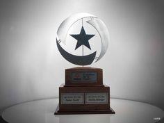 Star Award #award #aluminum #wood Star Awards, Stars, Wood, Unique, Woodwind Instrument, Trees, Home Decor Trees, Star, Woods