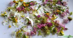 9 Methoden: Wilde Kräuter konservieren und das ganze Jahr über genießen