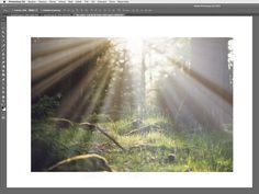 Dnes si ve Photoshopu ukážeme, jak celkem jednoduše docílit reálného světelného volumetrického světla od slunce tzv. Sun Rays efektu.
