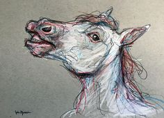 Horse Portrait Sketch pencil, colored pencil and pen on gray toned paper www.juliepfirsch.com