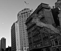 San Francisco in Black & White   Neil Cramer Photography