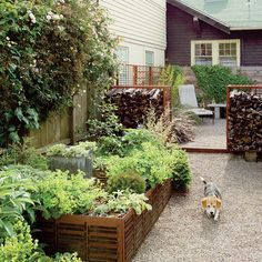 See how to ditch thirsty turf grass in favor of beautiful, easy-care gardens