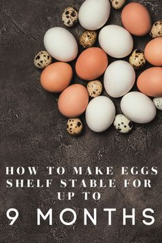 Preserving Eggs, Survival Food, Survival Tips, Survival Skills, Survival School, Survival Supplies, Survival Quotes, Storing Eggs, Types Of Eggs