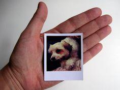 """FOTOS IMANTADAS. Tipo """"Polaroid"""" Set de 15 fotos"""