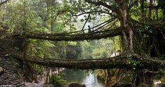 Les ponts vivants du Meghalaya – Le pont à deux étages du village de Nongariat