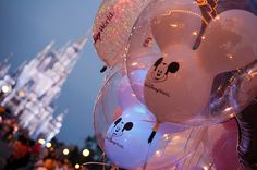 I want to go to Disney World/Disney Land.