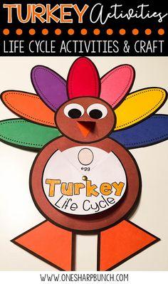 FFREE turkey life cy