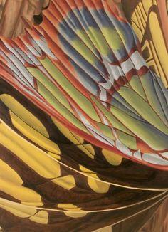 oil painting fine art butterfly abstract Rachel Steely http://www.rachelsteely.com/artwork/copper-orchard/