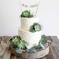 https://instagram.com/p/3o6R-HQij7/?taken-by=thefrosting Eucalyptus, succulent and hydrangea baby shower cake with gold topper