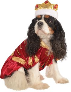 Kanine King Dog Costume -- Click image to review more details. (This is an affiliate link and I receive a commission for the sales) #Dogs