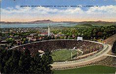 California Memorial Stadium at UC Berkeley. Go Bears!