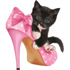 Black kitten on top of pink-and-white polka-dot stiletto illustration, Birthday cake Wish Beauty Party, Black Cat transparent background PNG clipart Kitten Cartoon, Kitten Images, Happy Birthday Beautiful, Image Chat, Cute Alphabet, Posters Vintage, Cat Boarding, Shoe Art, Cat Drawing