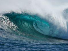 Plasma di Quinton: il rimedio naturale che viene dal mare