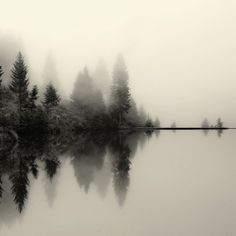 landscape black and white photography water fog reflection nature forest Landscape Photography, Nature Photography, Mirror Photography, Reflection Photography, Photography Tips, Photography Website, Photography Women, Digital Photography, Portrait Photography