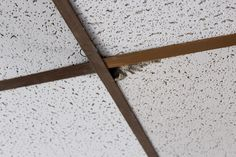 Old drop ceiling in need of replacement