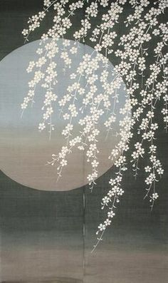 Japanese Noren Curtain-Cherry Blossom and Moon Japanese Patterns, Japanese Prints, Japanese Design, Japanese Shop, Japanese Painting, Chinese Painting, Chinese Art, Chinese Style, Afrique Art