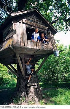 Online Tree House Planner on online building houses, online pets, online dog houses,