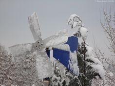 13.02.2016 Schneefall