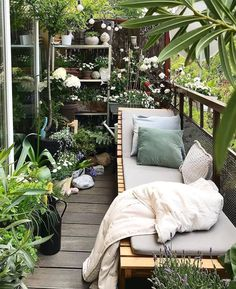 Small Balcony Garden, Small Balcony Decor, Small Balcony Design, Balcony Plants, Small Patio, Balcony Gardening, Balcony Flowers, Small Balconies, Terrace Garden
