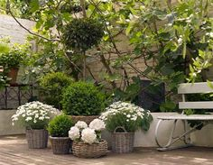 More beautiful white flowers for your garden. Very cute idea