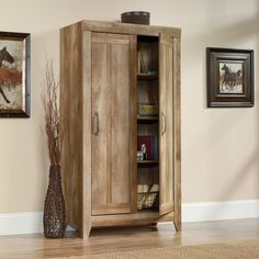 Sauder Furniture Storage Cabinets