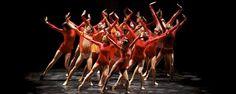 タイムラインの写真 - Complexions Contemporary Ballet