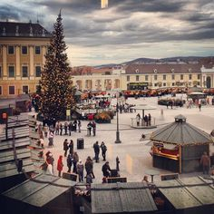 Christmas market outside the summer palace in Vienna