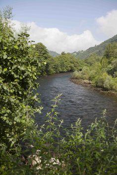 Coto de Juan Castaño, río Narcea, magnífico escenario para tentar truchas, reos y #salmones.