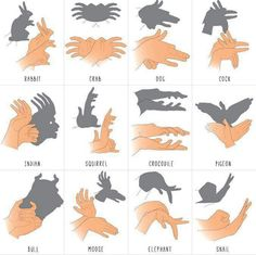 Schattenspiel Mehr puppets Shadow forms made by hand Shadow Puppets With Hands, Activities For Kids, Crafts For Kids, Diy Crafts, Hand Shadows, 1000 Life Hacks, Shadow Art, Shadow Play, Babysitting