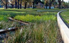 Edinburgh Gardens Raingarden by GHD Pty Ltd 01 « Landscape Architecture Works | Landezine