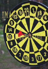 for sale bulls eye in darts