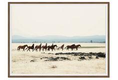 Christine Flynn, Wild Horses I