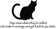 Vinyl Wall Decor  Humorous Cat quote  18 by nlcorder on Etsy