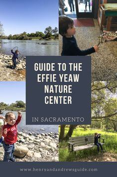 Guide to the Effie Yeaw Nature Center in Sacramento, California | Things to Do in Sacramento with Kids | Henry and Andrew's Guide (www.henryandandrewsguide.com)