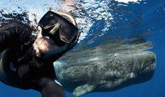 20- Underwater selfie - AhmedAlKIremli.com