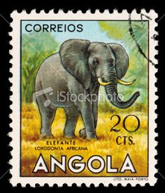 -angola-elephant-postage-stamp.jpg