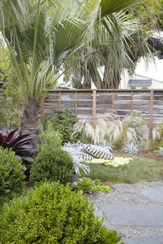 At her home in Berkeley, California, landscape designer Flora Grubb relies on a bulky palm to create a layer of privacy in the garden. See more in Landscape Designer Visit: At Home with Flora Grubb in Berkeley, CA. Photograph by Caitlin Atkinson. Landscaping With Rocks, Modern Landscaping, Yard Landscaping, Landscaping Ideas, Landscape Design, Garden Design, Flora Grubb, Mediterranean Garden, Modern Backyard