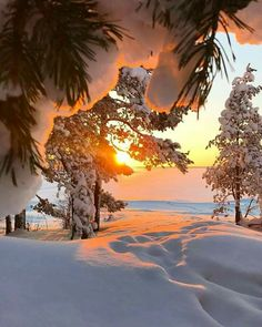 Evening Sunset in 2020 Winter Sunset, Winter Love, Winter Scenery, Winter Photography, Landscape Photography, Nature Photography, Evening Sunset, Winter Wallpaper, Christmas Wallpaper
