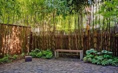 Imagen de jardin decorado con bambu
