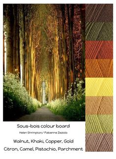 Sous Bois - Stylecraft Special DK - Colour Pack Choosing which colours to use for a large project like a blanket is something that we know lots of