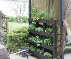 DIY Wood Pallet Herb Garden Tutorial | 99 Pallets