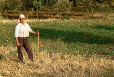 Farmer watering his vegetable fields in Astros Arcadia Greece Arcadia Greece, Film Photography, Travel Photography, Farming, Fields, Vegetables, Instagram Posts, Veggie Food, Vegetable Recipes