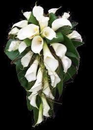 Arum lily arrangement